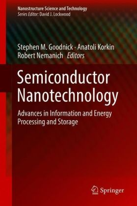 Semiconductor Nanotechnology