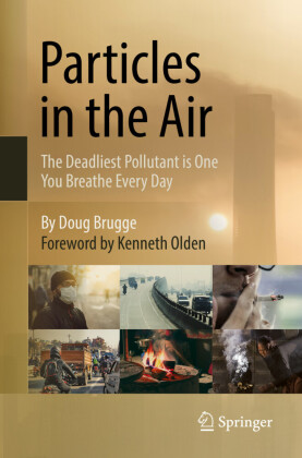 Particles in the Air: The Deadliest Pollutant is One You Breathe Every Day