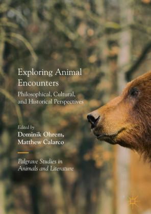 Exploring Animal Encounters