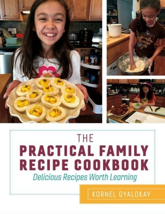 The Practical Family Recipe Cookbook
