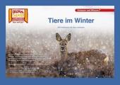 Kamishibai: Tiere im Winter