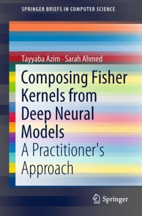 Composing Fisher Kernels from Deep Neural Models