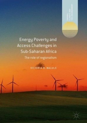 Energy Poverty and Access Challenges in Sub-Saharan Africa