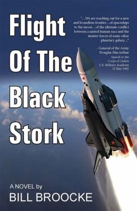 Flight of the Black Stork