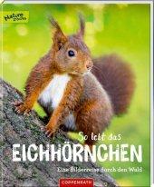 So lebt das Eichhörnchen Cover