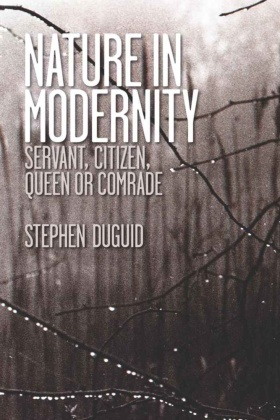 Nature in Modernity
