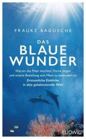 Das blaue Wunder Cover