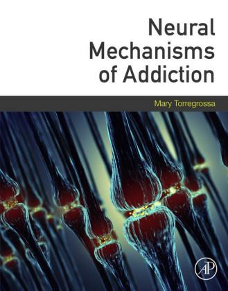 Neural Mechanisms of Addiction