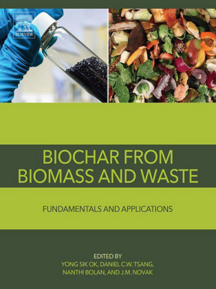 Biochar from Biomass and Waste