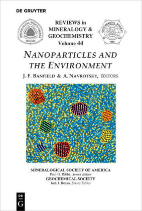 Nanoparticles and the Environment