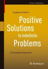 Positive Solutions to Indefinite Problems