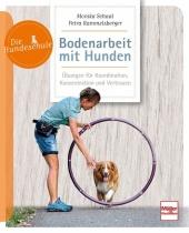 Bodenarbeit mit Hunden