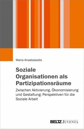 Soziale Organisationen als Partizipationsräume
