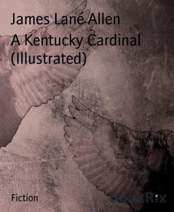 A Kentucky Cardinal (Illustrated)