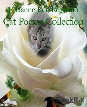 Cat Poems Collection