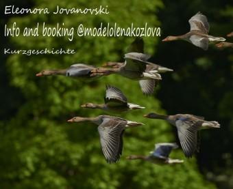 Info and booking @modelolenakozlova