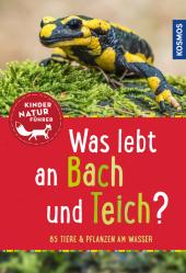 Was lebt an Bach und Teich?