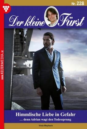 Der kleine Fürst 228 - Adelsroman
