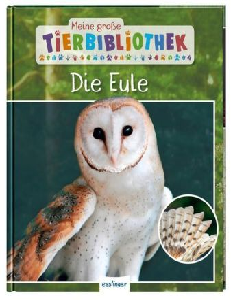 Meine große Tierbibliothek: Die Eule