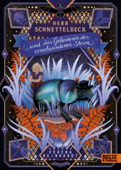 Herr Schnettelbeck und das Geheimnis der verschwundenen Sterne