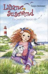 Liliane Susewind - Ein Seehund taucht ab Cover