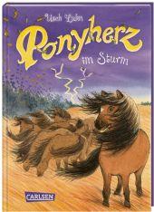 Ponyherz 14: Ponyherz im Sturm Cover