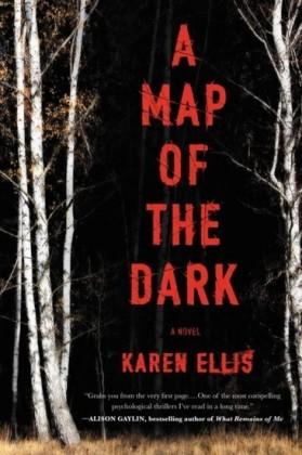 Map of the Dark