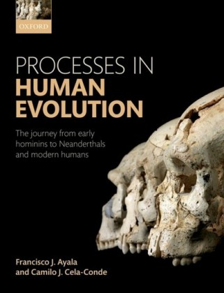 Processes in Human Evolution