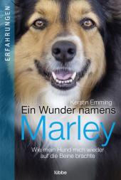 Ein Wunder namens Marley Cover