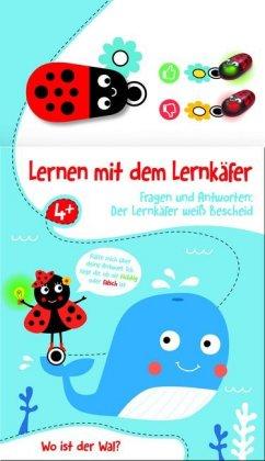 Lernen mit dem Lernkäfer - Wal, m. Spielfigur