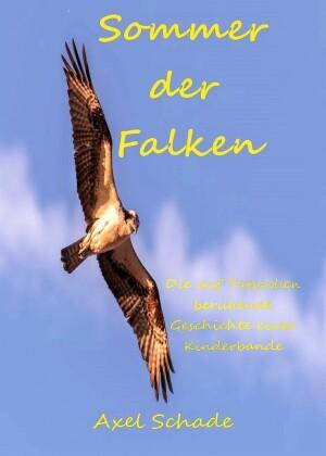 Sommer der Falken