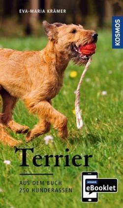 KOSMOS eBooklet: Terrier - Ursprung, Wesen, Haltung