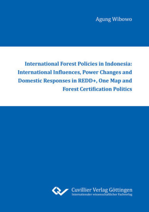 International Forest Policies in Indonesia: International Influences, Power Changes and Domestic Responses in REDD+, One Map and Forest Certification Politics