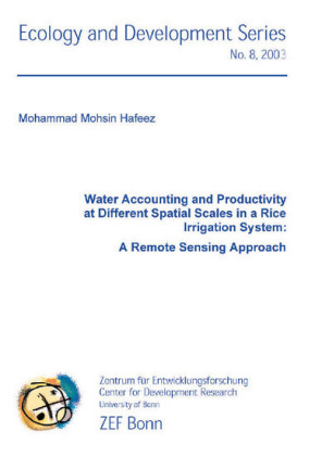 Water Accounting and Productivity at Different Spatial Scales in a Rice Irrigation System: A Remote Sensing Approach