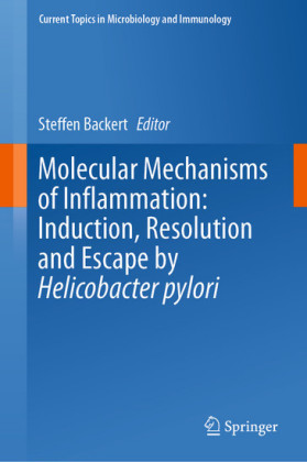 Molecular Mechanisms of Inflammation: Induction, Resolution and Escape by Helicobacter pylori
