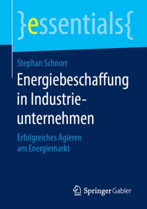 Energiebeschaffung in Industrieunternehmen
