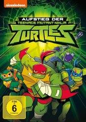 Aufstieg der Teenage Mutant Ninja Turtles, 1 DVD