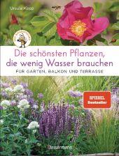 Die schönsten Pflanzen, die wenig Wasser brauchen für Garten, Balkon und Terrasse
