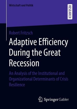 Adaptive Efficiency During the Great Recession
