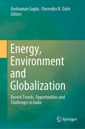 Energy, Environment and Globalization