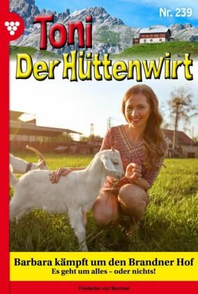 Toni der Hüttenwirt 239 - Heimatroman