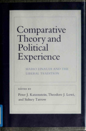 Comparative Theory and Political Experience