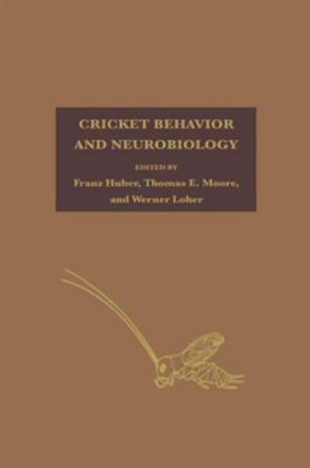 Cricket Behavior and Neurobiology