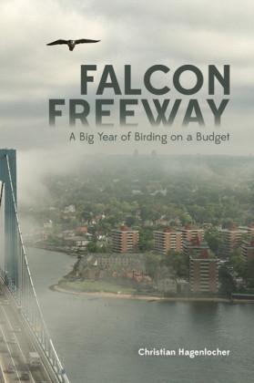 Falcon Freeway