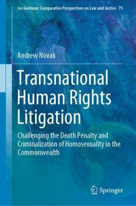 Transnational Human Rights Litigation