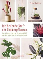 Die heilende Kraft der Zimmerpflanzen