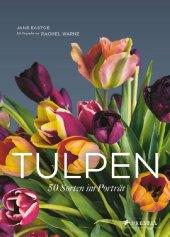 Tulpen Cover