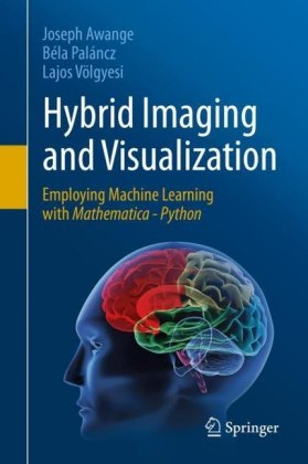 Hybrid Imaging and Visualization