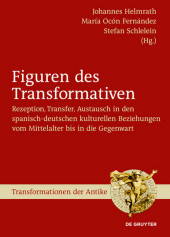 Figuren des Transformativen
