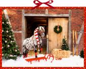 Wandkalender - Dotti feiert Weihnachten